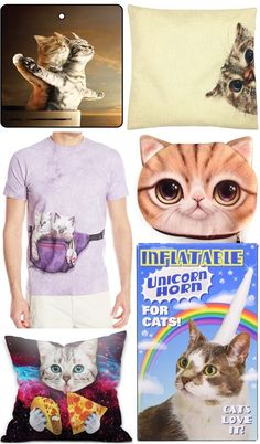 56 Cat Lover Gifts Funny Birthday