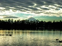 Amanecer en Lago de Tlahuac, 2010. (Tlahuac Lake)