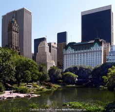New-York-Central-Park-NYC-2