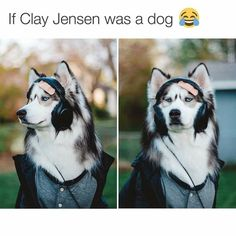 If Clay Jensen was a dog