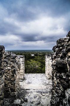 "©Sin titulo, de la serie: ""Calakmul"" 8 de Septiembre de 2013 Calakmul, Camp; México."