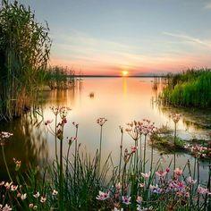 Nature!!!***