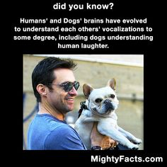 Like Mighty Facts on Facebook: http://facebook.com/mightyfacts