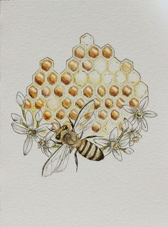 Honey Bee Cottage / Honeycomb is Sweet for the Soul watercolor and ink Mandala Tattoo Design, Honeycomb Tattoo, I Love Bees, Bee Art, Bee Happy, Save The Bees, Bees Knees, Queen Bees, Bee Keeping