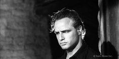 Official Marlon Brando Website
