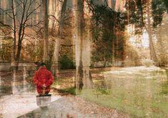 #sonntag spaziergang mit #textur #artphoto #kunst Country Roads, Photos, Courtyard Gardens, Sunday, Texture, Creative, Art