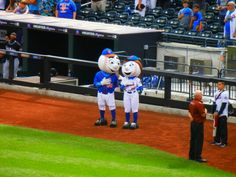 Mr and Mrs Met