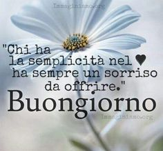 Semplicità...❤ Never Stop Dreaming, Engagement, Tours, Facebook, Wall, Sentences, Good Day, Sarcasm, Days Of Week