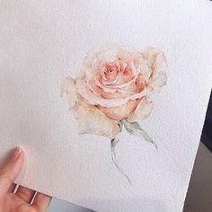 오늘도 수고많으셨어요 장미 한송이 선물#오늘의그림 #카피는안돼요#instaart #illustration#artgram #aquarelle #watercolor#painting #drawing #꽃 #꽃스타그램 #그림 #꽃그림#수채화 #일러스트…