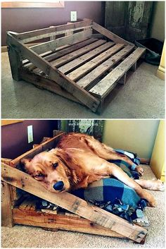 reused wood pallet dog bed