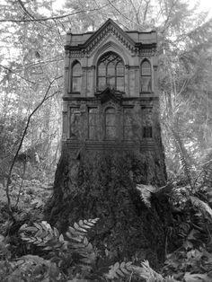 !!! cool house! I feel Halloween coming ...