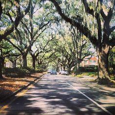 Savannah, #Georgia. Photo by @byowler.