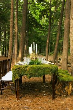 How do you create a table cover from moss?