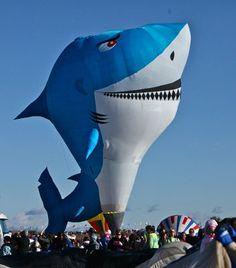 Great Reno Balloon Race Event...