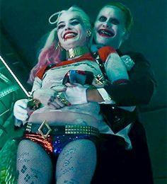 he's so cute, but if I was Harley, he'd also be so dead :) love my Puddin