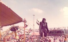 Playcenter fecha as portas após 39 anos de magia e diversão - Mix - iG King Kong, 1976 Movies, Nostalgia, Hip Hop, Fair Grounds, City, Travel, Places, Antiques