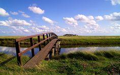little creek and bridge in germany