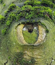 Mother nature is keeping an eye on us.👁 #PGdaily photo from unknown #lovetotravel #instatravel #mytravelgram #travelphotography #traveldiary #travelfar #beautifuldestinations #pic #lp #travelling #beautiful #lovetravelling #photography #instagood #sun #wonderful #openmyworld #holiday #awesome #picoftheday #travel #travelingram #view #vacation #globe #stunning #weather #roadtrip #traveling