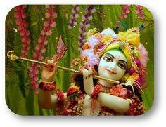 Today's Darshan Sri Sri Krishna @ISKCONNVCC, Pune