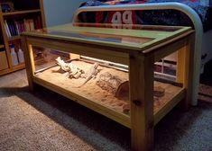 Just finished my first wood working project: a coffee-table-styled enclosure for my bearded dragon. Bearded Dragon Tank Setup, Bearded Dragon Vivarium, Bearded Dragon Enclosure, Bearded Dragon Terrarium, Bearded Dragon Cage, Bearded Dragon Habitat, Reptile Habitat, Reptile Room, Reptile Cage