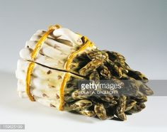 Foto stock : Asparagus-shaped container, decorated majolica, low-temperature and high-temperature firing, Felice Clerici manufacture or Pasquale Rubati manufacture, Milan. Italy, 18th century.