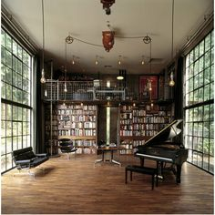 further fantasy.  books and windows.