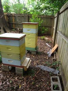 Awesome blog on bee keeping -Linda's Bees