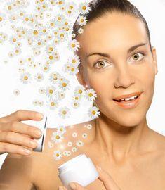 Gesichtscreme selber machen: Diese Kamillencreme beruhigt und wirkt antibakteriell. www.ihr-wellness-magazin.de