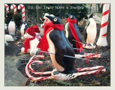 Penguins on candy cane skis