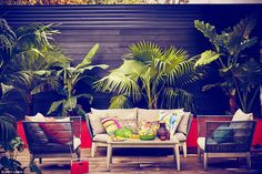 JUNGLE: Colours are psychedelic and interior schemes are full of exotic flavour as in this room theme designed by John Lewis
