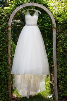 Vera Wang wedding gown photographed on a vine-covered trellis.