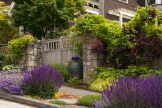 Turn the struggling ribbon of lawn between the sidewalk and the street into a glorious garden with tough, easy-care plants Sidewalk Landscaping, Landscaping Tips, Front Yard Landscaping, Curb Appeal Landscaping, Sunset Landscape, Landscape Design, Garden Design, Landscape Plans, Abstract Landscape