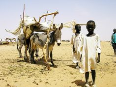 Refugees in the El Fasher camp, Darfur, Sudan by SPANA Charity