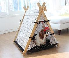 20 seriously stylish dog beds for the discerning pet Diy Teepee, Teepee Tent, Teepees, Teepee Kids, Yorkies, Dog Tent, Led Dog Collar, Pet Shop, Pet Dogs