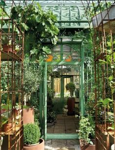 The look of this is just wonderful. Greenhouse, conservatory, garden room.