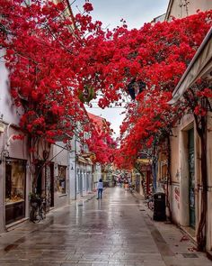 Streets Of Love, Beautiful Streets, Wonderful Places, Beautiful Places, Beautiful Moments, Destinations, Destination Voyage, Photos Voyages, Travel Abroad