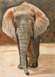 Portrait of a wild elephant done in oil pastel