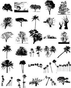 Free Graphics: Lush Vector Trees and Summer Leaves Free Graphics, Vector Graphics, Vector Art, Vector Trees, Leaves Vector, Tree Silhouette, Silhouette Vector, Photoshop, Inkscape Tutorials