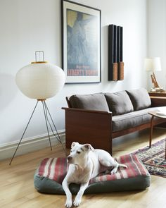 living room - Whitney Parris-Lamb's Brooklyn Apartment