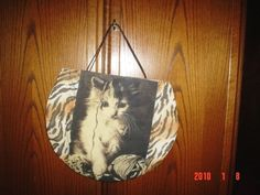 coleção bolsa de imagens gato