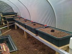 Completed Aquaponic Growbeds