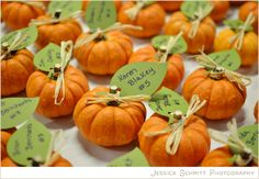 Pumpkin Inspired Fall Wedding Inspiration! Escort Cards