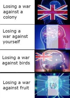 saved by berispen Dark Humour Memes, Dark Memes, Really Funny Memes, Stupid Funny Memes, History Jokes, Military Memes, Hetalia Funny, Funny Pictures Can't Stop Laughing, Gamer Humor