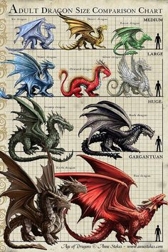 Interview with Mother of Dragons, Anne Stokes