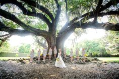 The bride and her bridesmaids pose for a photo under the Tree of Life in Audubon Park prior to the wedding ceremony in New Orleans