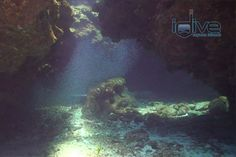The south side of Grand Cayman is home to some of the most spectacular shallow dive sites in the Caribbean.