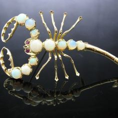 SOLD – Scorpion Brooch with Opals and Rubies Vintage Pins, Unique Vintage, Diamond Rings, Diamond Engagement Rings, Insect Jewelry, Galway Ireland, Scorpion, Brooches, Piercings