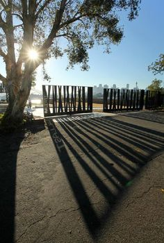 GRAPHIC AMBIENT » Blog Archive » Ballast Point Park, Australia