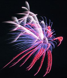 HoliBlog: 4th of July Fireworks at Holiday World