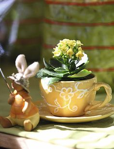 http://www.shelterness.com/31-idea-to-use-tableware-as-planters-and-flower-vases/pictures/8238/